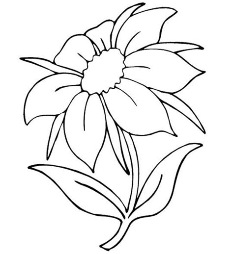 printable flower pictures to color beautiful flowers pretty flower coloring pages