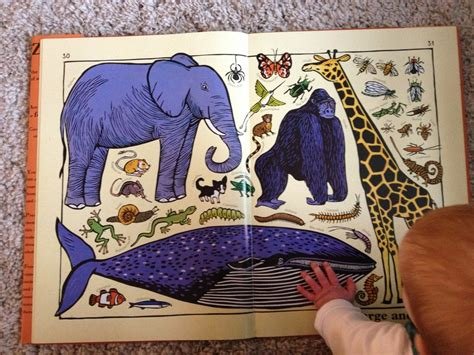 zoo ology jenny s picture book review zoo ology by joelle jolivet
