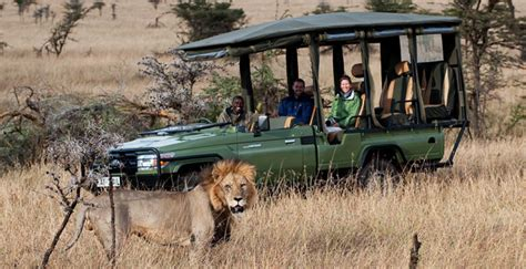 african safari car africa safari vehicles what to expect on your trip