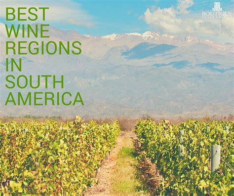 best wine regions best wine regions in south america boutique south america