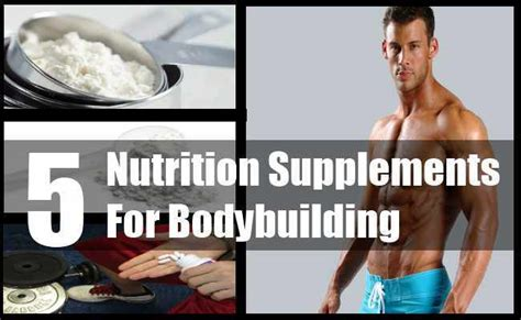 5 supplements for bodybuilding 5 nutrition supplements for bodybuilding bodybuilding