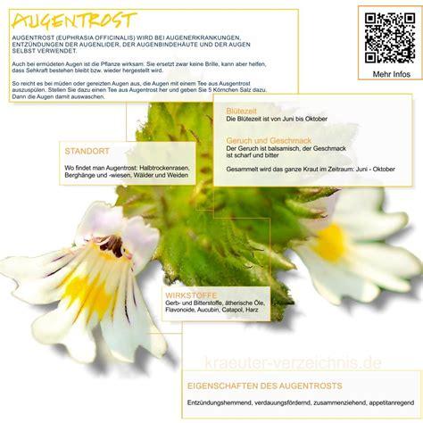Gartenkräuter Pflanzen by Kr 228 Uter Heilkr 228 Uter Heilpflanzen Kr 228 Uter Und Salben