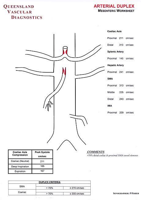 Vascular Ultrasound Worksheets by Carotid Ultrasound Worksheet Calleveryonedaveday