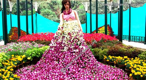 flower show bangalore flower show lalbagh flower show