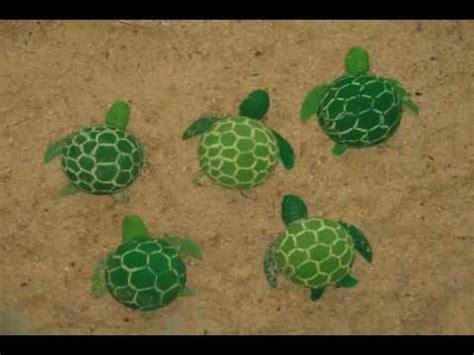maquetas de tortugas con botella se su aleta amiga universidad del zulia youtube