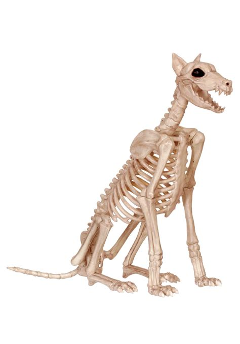 spike s dogs spike the skeleton