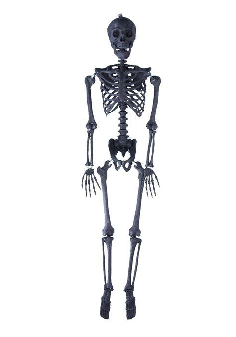 Skeleton Rantai Black 1 63 quot black glitter skeleton
