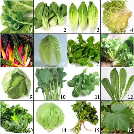 different type of leafy vegetable with name green leafy vegetables inlifehealthcare