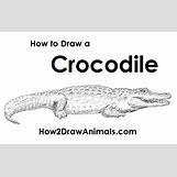 Alligator Mouth Open Drawing | 500 x 315 jpeg 60kB