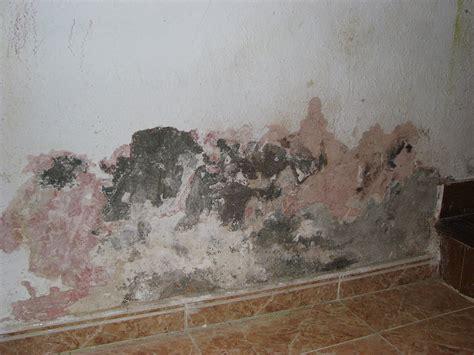 humedad en paredes interiores solucion humedades por capilaridad 161 causas y soluciones