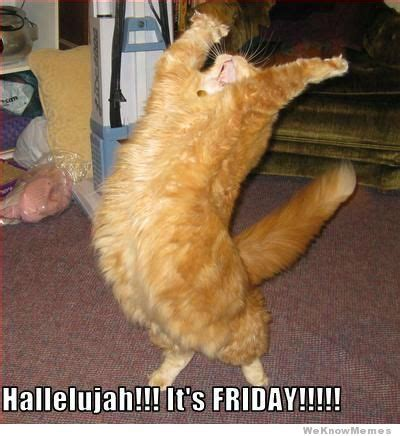 Its Friday Funny Meme - hallelujah it s friday weknowmemes