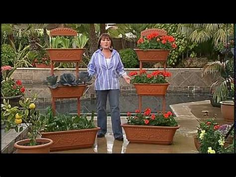 The Perfect Patio Planter Small Space, Big Garden   YouTube
