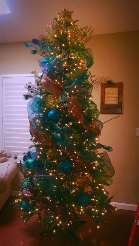 peacocks turquoise and christmas on pinterest