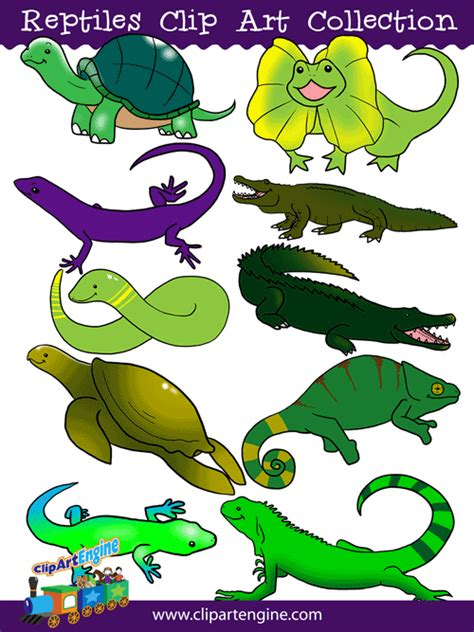 free clipart collection reptiles clip collection for personal and commercial use