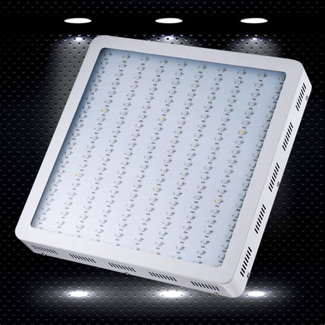 King 1200w Led Grow Light Review Your First Step To Modern Cing Led Lights