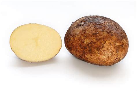 Potato Wiki by Potato Simple The Free Encyclopedia