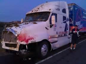 Truck Supplies Deer Boise State Equipment Truck Hits Cow Photo Sportsgrid