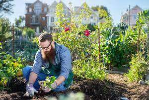 Gartenkalender Was Ist Wann Zu Tun by Endspurt In Der Gartensaison Wohnnet At