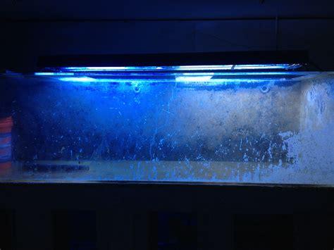 Acrylic Aquarium buffing acrylic corallore