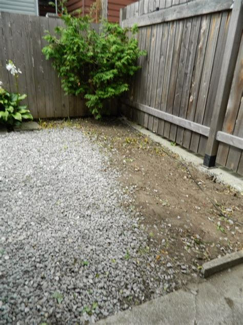 backyard cleanup services the best 28 images of backyard cleanup services backyard