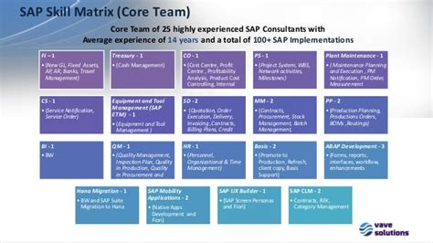 Vave Overview Feb 2016 Sap Matrix Template