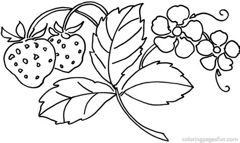 flower coloring pages 1 coloring kids flower images for coloring kids coloring europe travel