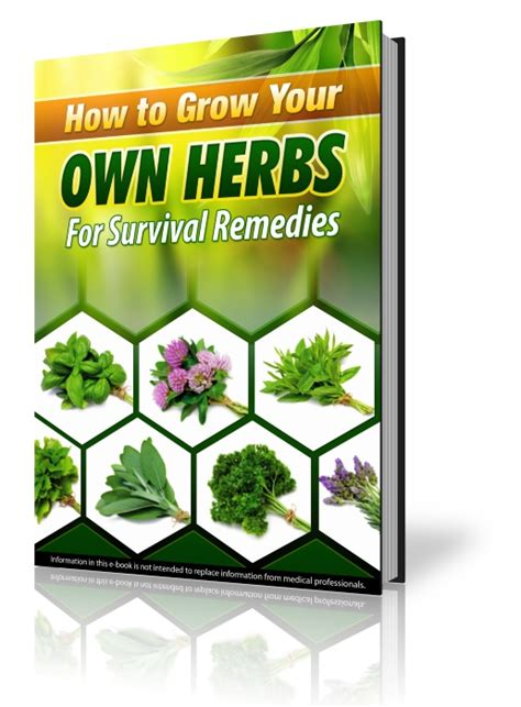 Grow Your Own Herbs by Survival Herb Bank Of Medicinal Herb Seeds And Survival