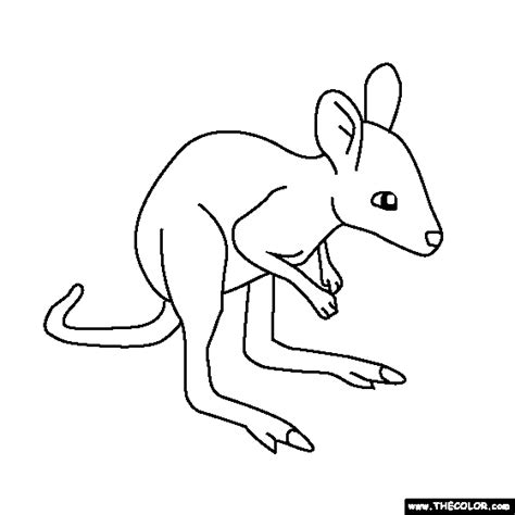 coloring page of a kangaroo and joey online coloring pages starting with the letter b page 2