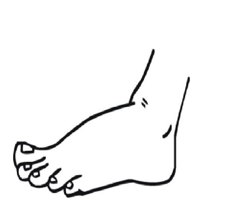 Foot Coloring Pages Human Body Parts Coloring Part 3