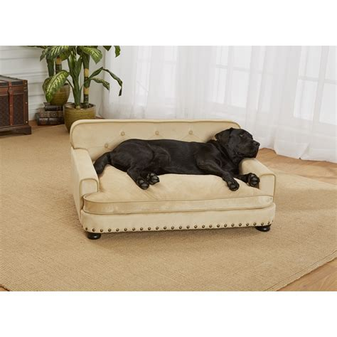 pet sofa enchanted home pet library dog sofa reviews wayfair