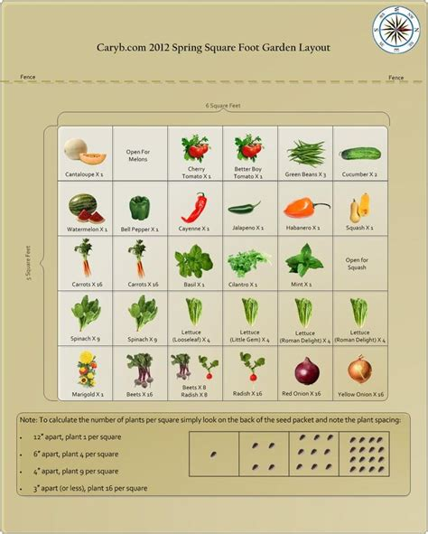 Square Foot Gardening Layout Square Foot Gardening Square Foot Garden