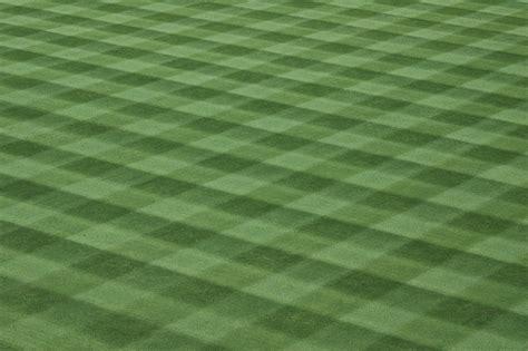 field pattern en francais free images landscape nature grass growth sport