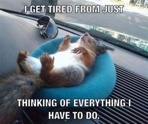 Tired At Work Meme - i get tired from just thinking funny pictures