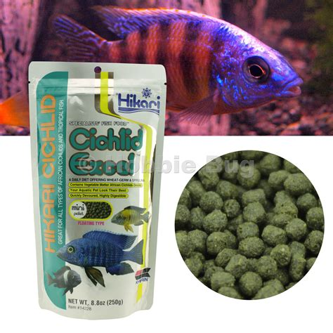 Mini Pellet Agaru Gold Fish hikari cichlid excel mini pellet 8 8 oz floating type