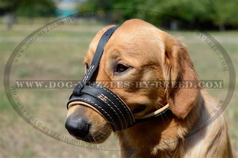 comfortable muzzles for dogs comfortable nappa leather dog muzzle m88 1060 leather