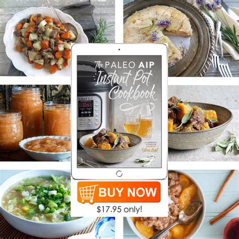 paleo instant pot cookbook paleo diet recipes for your pressure cooker easy recipes for healthy to lose weight fast books the paleo aip instant pot cookbook review and giveaway
