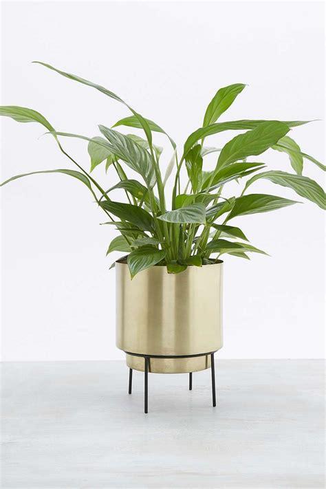 Deco Salon Industriel 4811 by Gro 223 Er Blumentopf Gold Pflanzen Im Industrial Stil Gift