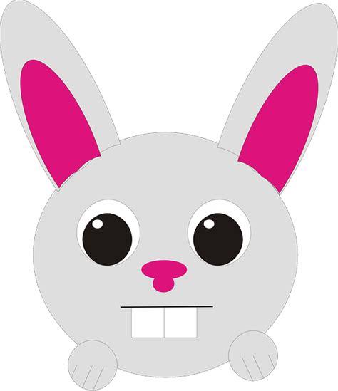 hewan kelinci kepala gambar vektor gratis  pixabay