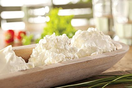cottage cheese production dsm offers cultures for cottage cheese production 2014
