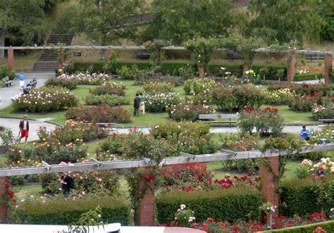 Wellington Botanic Gardens In The Wellington Botanic Garden Wellington New Zealand Travel Photos By Galen R