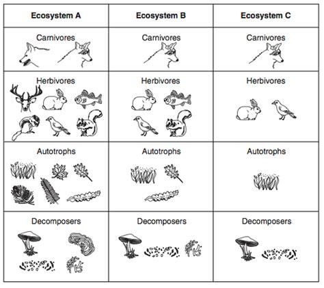 ocean decomposers list | www.pixshark.com images