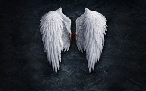 angel wings wallpaper 200318