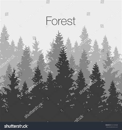 forest template coniferous forest background pine tree stock vector