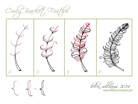zentangle patterns tangle patterns scrolled feather curly bracket feather pattern