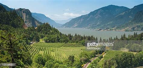 Columbia Lse Executive Mba by Columbia River Gorge Stock Photos And Pictures Getty Images