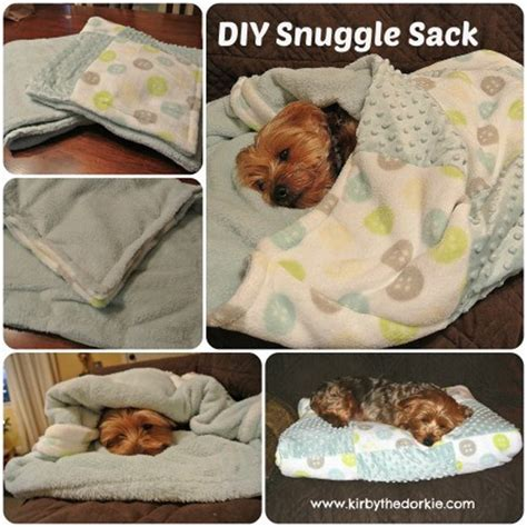 diy crafts for dogs diy pet project ideas diy projects craft ideas how to s for home decor with