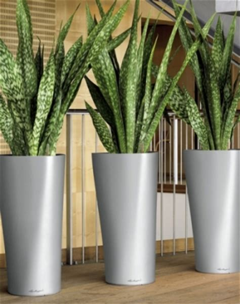 Floor Planters Indoor by Containers Floor Planters Gaddys Indoor Plant Hire
