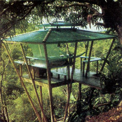 How To Build A Tree House by How To Build A Treehouse Diy Earth News