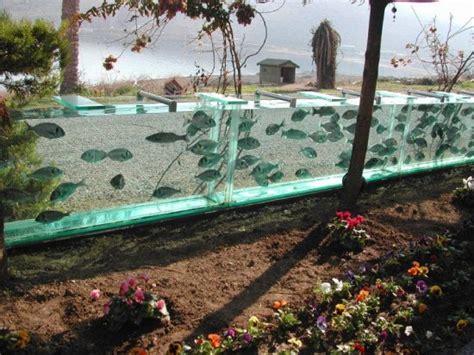 rumah  pagar kolam ikan ide menarik ngawi cyber