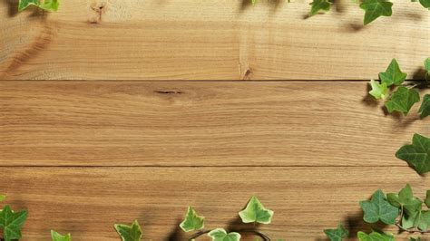 Best Plants For Desk by